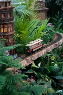 Bronx Botanical Train Show-17