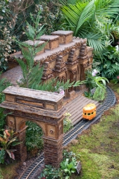 Bronx Botanical Train Show-4