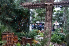 Bronx Botanical Train Show-6