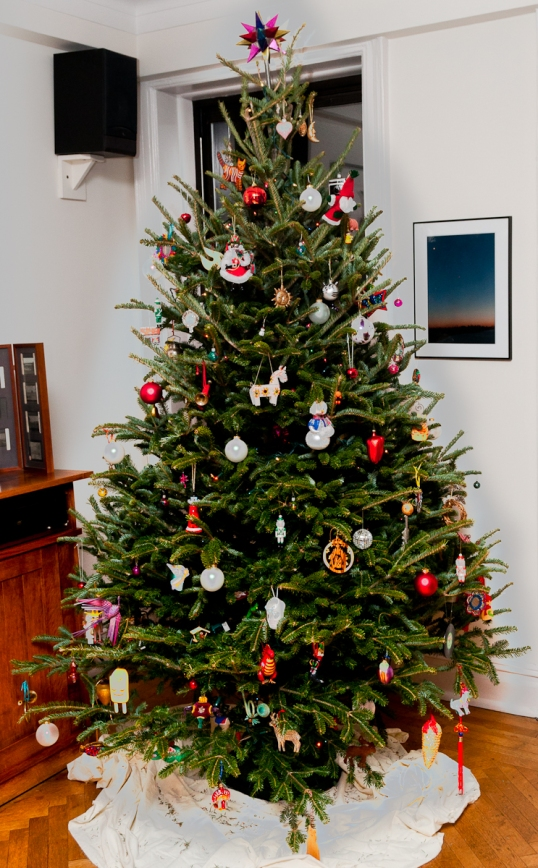 Christmas Tree_2012-100