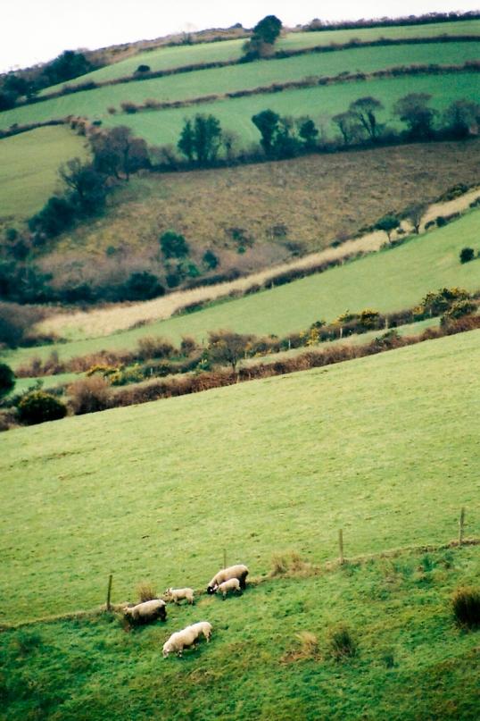 Ireland-2