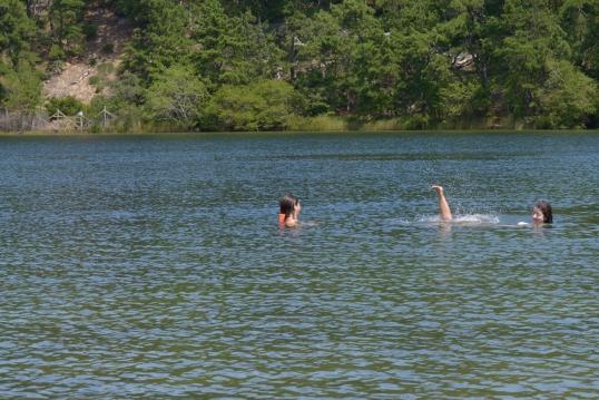 Free floating leg-