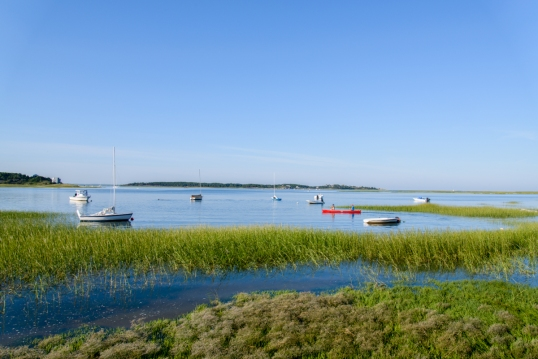 Wordless Wednesday Cape Cod Edition-0525