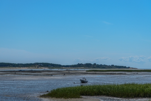 Wordless Wednesday Cape Cod Edition-0537