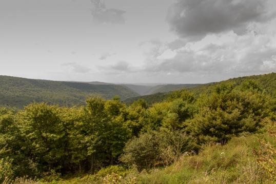Allegheney Mountains-5