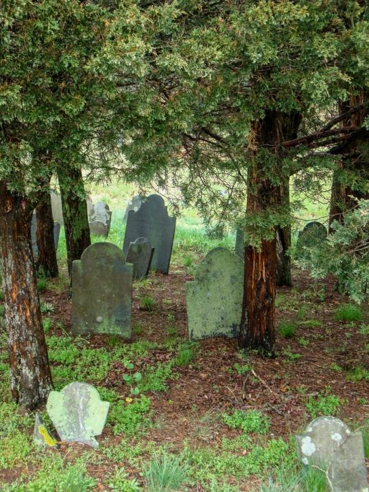 Inside - Wellfleet Cemetery-08948