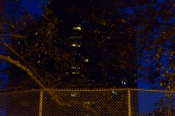 Borough Walk_East Harlem-24