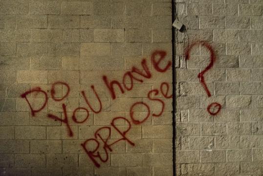 Purpose-1310180149